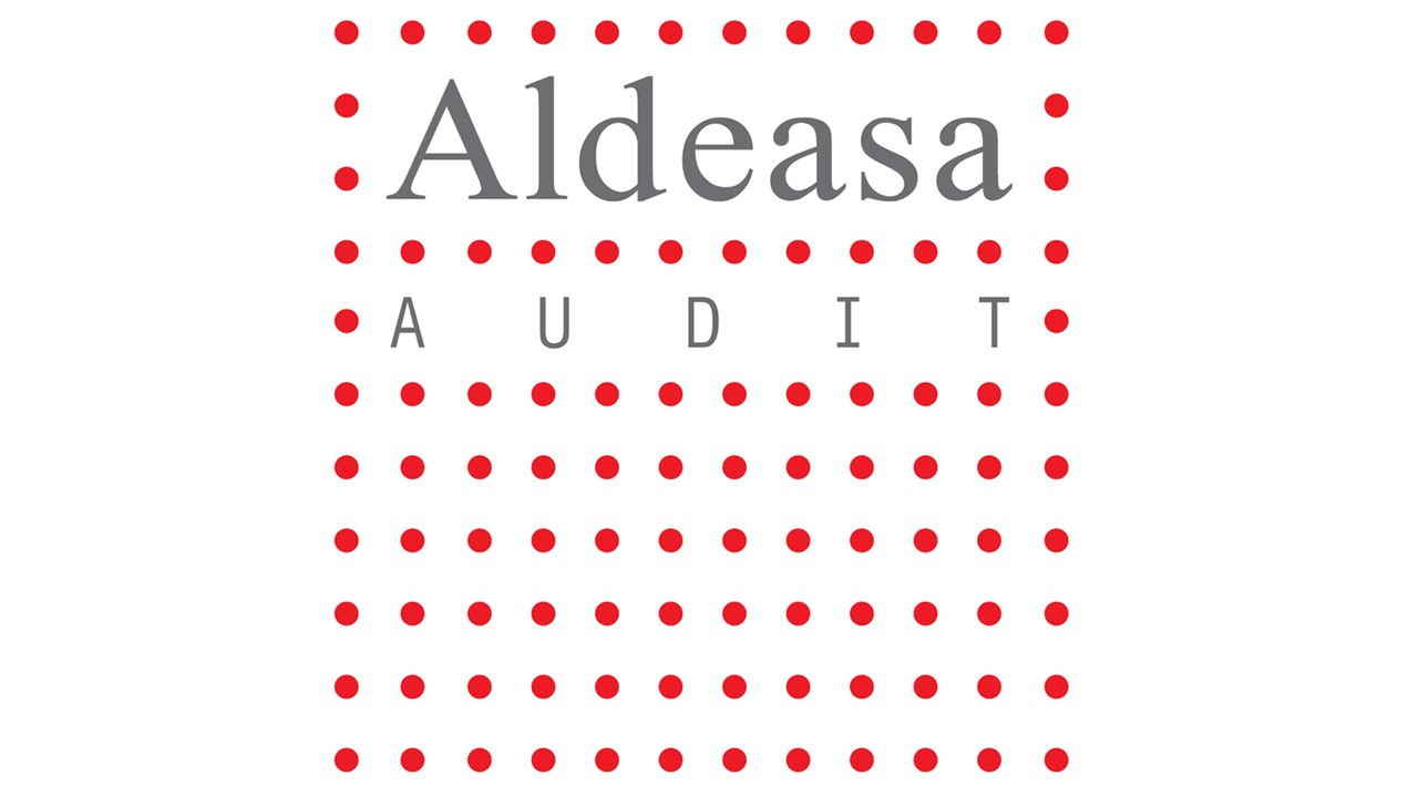 7 - Aldeasa audit_logo web NEW.jpg